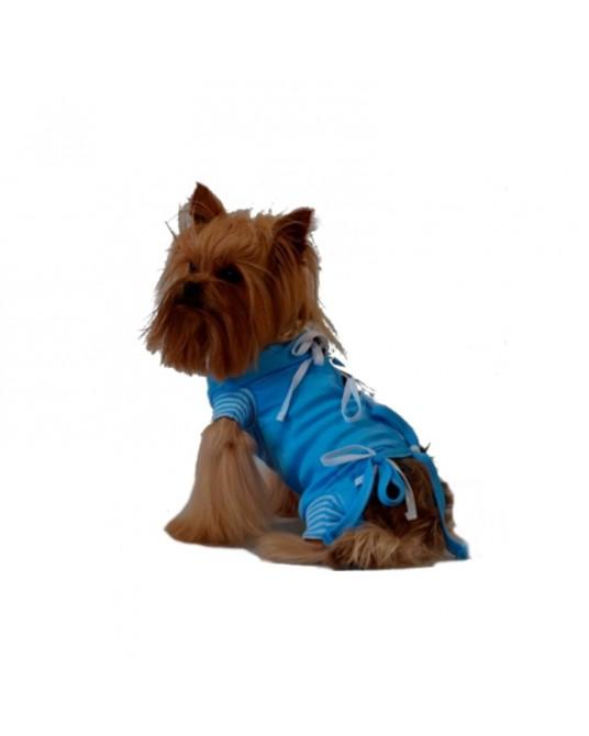 Schutzhemd, OP Hemd für Hund oder Katze, blau