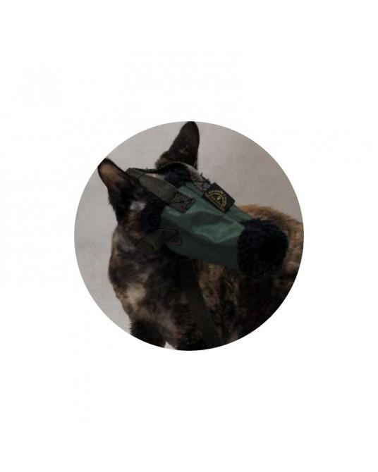 Maulkorb für Katzen