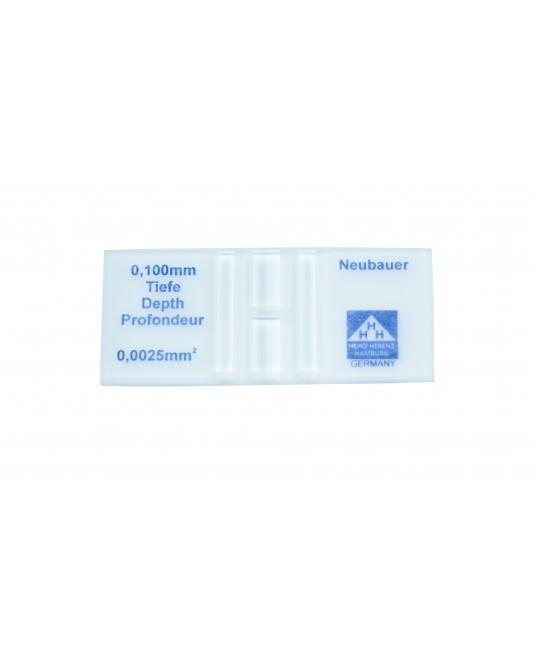 Neubauer- Zählkammern