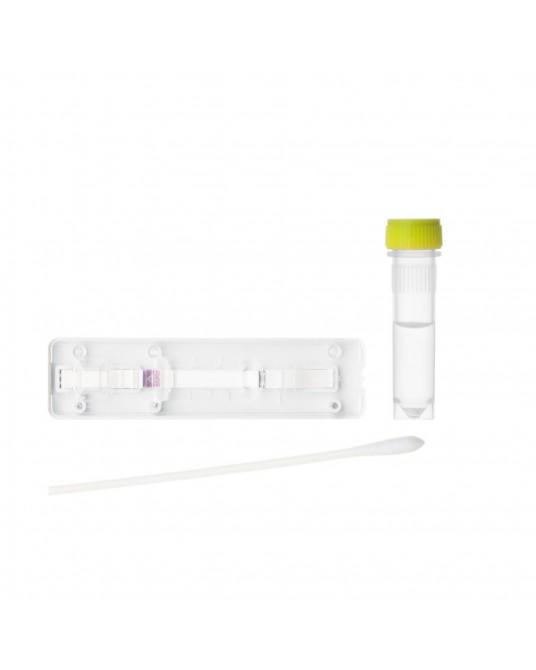 Diagnosetest Antigen CDV/CIV Ag